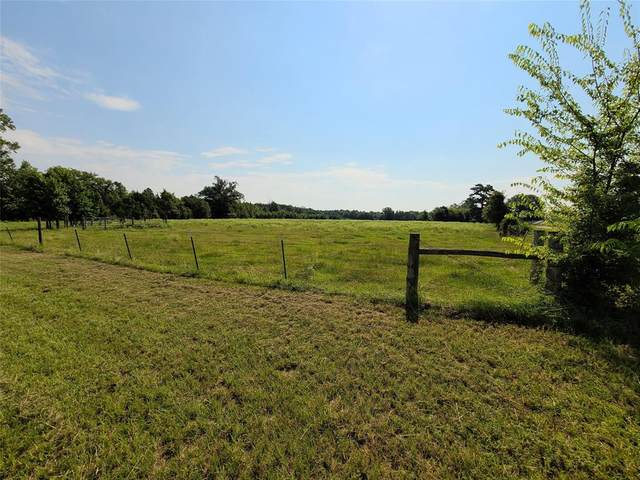 11818 Fm 2088, Pittsburg, TX 75686 (MLS #14427301) :: The Daniel Team