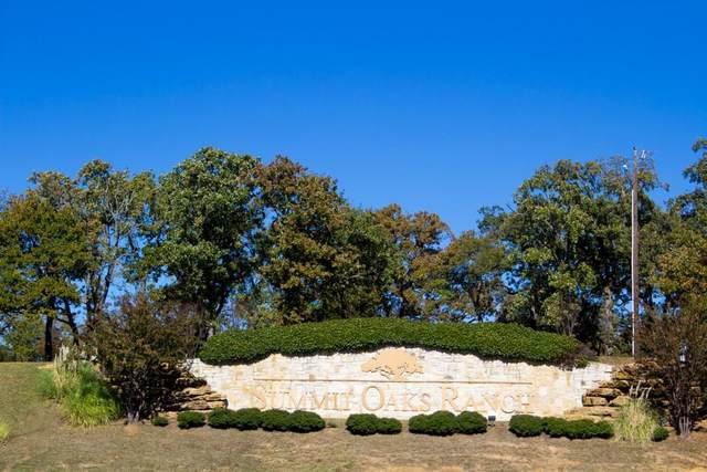 6 Summit Oaks Circle, Denison, TX 75020 (MLS #14428100) :: Team Hodnett