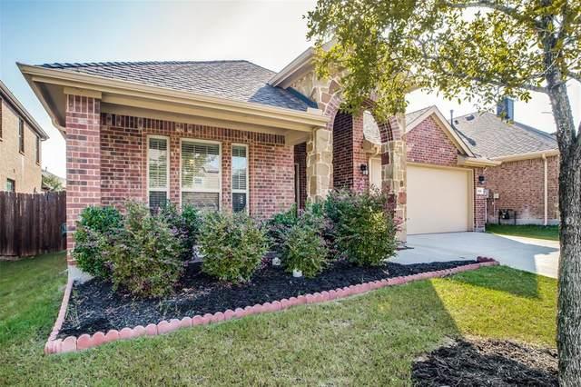 313 Mount Olive Avenue, Mckinney, TX 75072 (MLS #14428470) :: Real Estate By Design