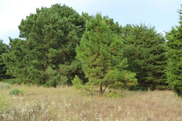 Lot 2 Zebra Crossing, Larue, TX 75770 (MLS #14428677) :: The Hornburg Real Estate Group
