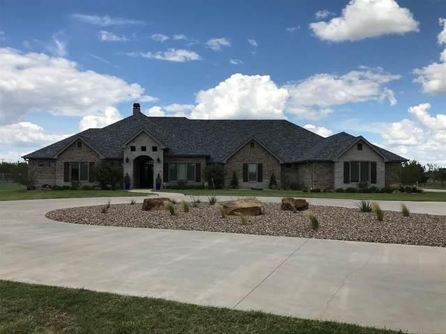 262 Old Cheyenne Trail, Abilene, TX 79602 (MLS #14429356) :: Team Hodnett