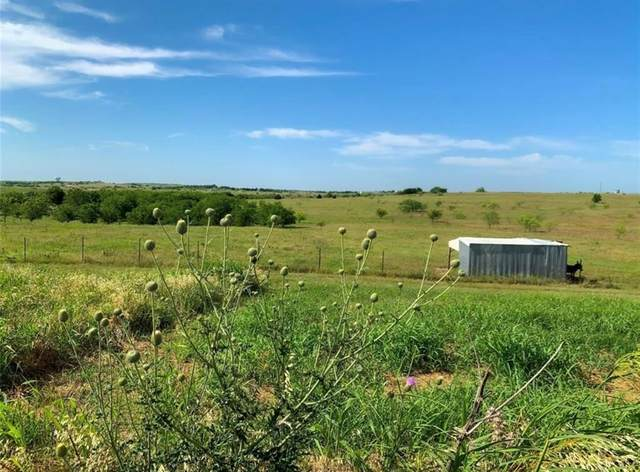 TBD T N Skiles Road, Ponder, TX 76259 (MLS #14429741) :: The Kimberly Davis Group