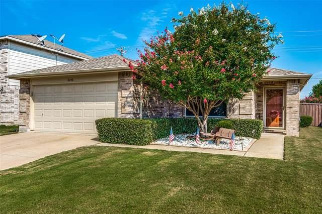 2245 White Pine Drive, Little Elm, TX 75068 (MLS #14430016) :: The Daniel Team