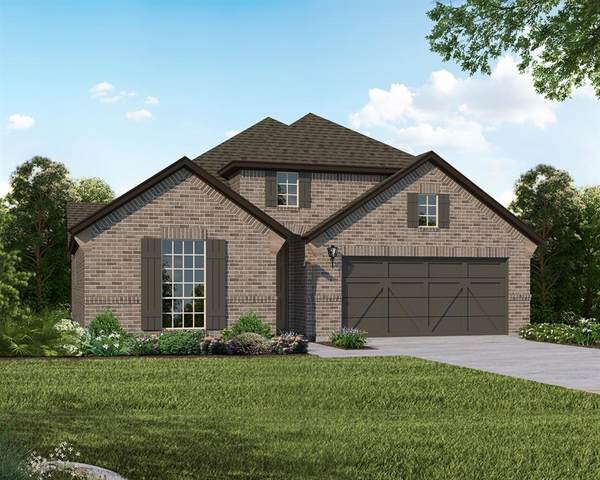 6029 Mapleshade Way, Little Elm, TX 76227 (MLS #14430231) :: The Heyl Group at Keller Williams