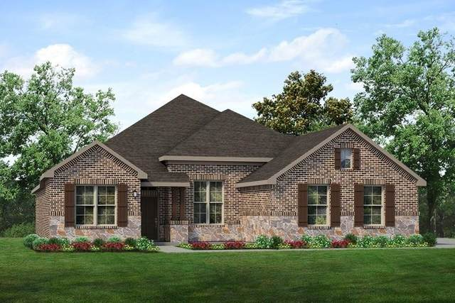 10020 County Road 499, Princeton, TX 75407 (MLS #14430530) :: The Hornburg Real Estate Group