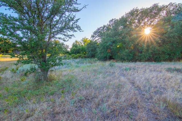 TBD County Road 505, Goldthwaite, TX 76844 (MLS #14431342) :: The Good Home Team