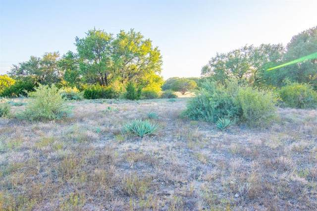 Tract 3 County Road 505, Goldthwaite, TX 76844 (MLS #14431372) :: The Good Home Team