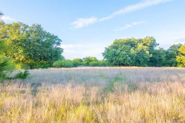 Tract 4 County Road 505, Goldthwaite, TX 76844 (MLS #14431491) :: The Good Home Team