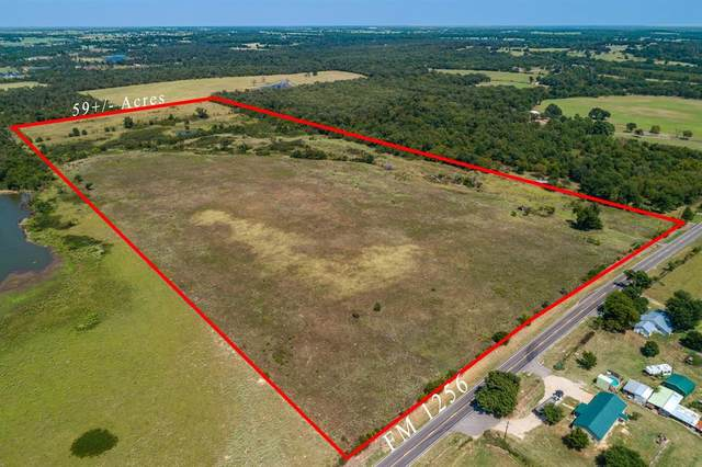 5XXX Fm 1256, Canton, TX 75103 (MLS #14431503) :: The Kimberly Davis Group
