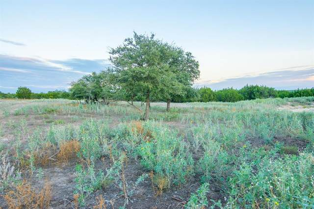 88 W County Road 410, Goldthwaite, TX 76844 (MLS #14431527) :: The Good Home Team