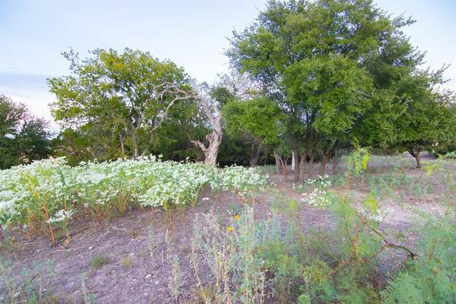 98 W County Road 410, Goldthwaite, TX 76844 (MLS #14431567) :: The Good Home Team