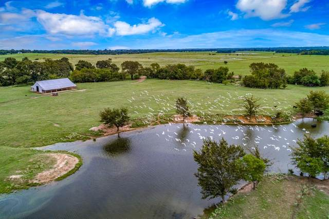 TBD State Highway 19, Canton, TX 75103 (MLS #14431568) :: The Kimberly Davis Group