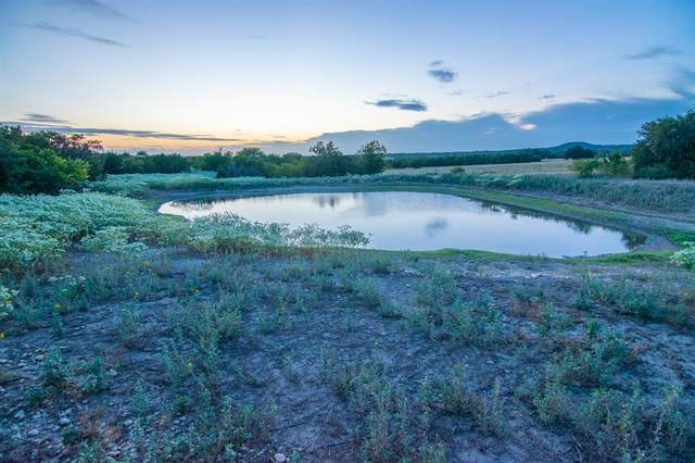 106 W County Road 410, Goldthwaite, TX 76844 (MLS #14431601) :: The Good Home Team