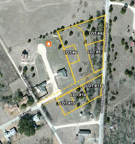 1002 Brently Drive, Hico, TX 76457 (MLS #14432541) :: The Rhodes Team