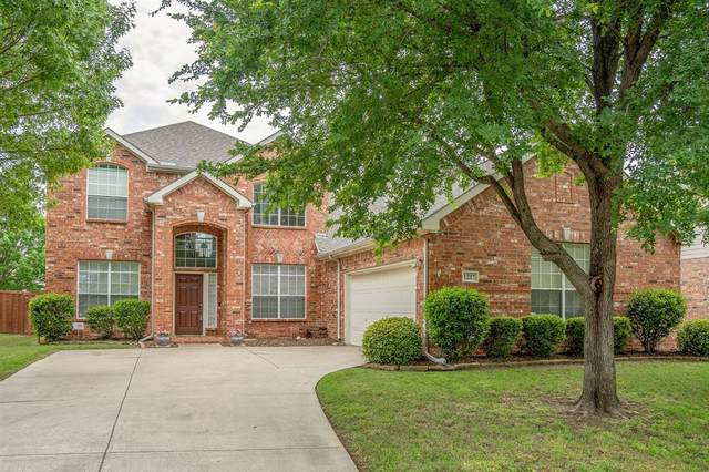 1217 Spring Ridge Lane, Flower Mound, TX 75028 (MLS #14433281) :: The Kimberly Davis Group