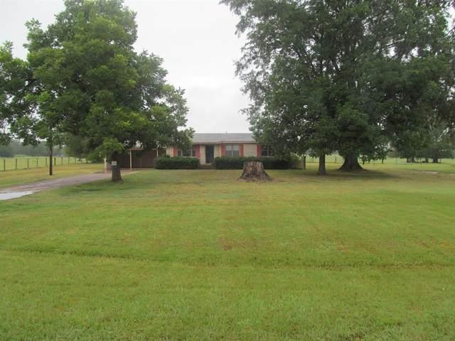 TBD Fm 312, Winnsboro, TX 75494 (MLS #14433786) :: The Kimberly Davis Group