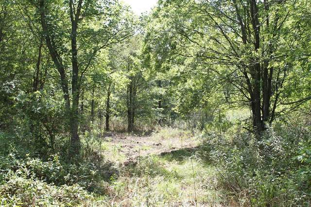 Tract 1 Cr 2260, Quinlan, TX 75474 (MLS #14433976) :: Team Hodnett