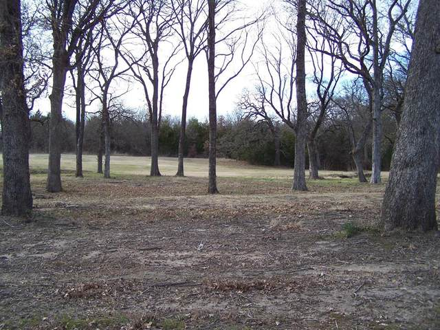 201 Bent Oak Drive, Pottsboro, TX 75076 (MLS #14434061) :: Premier Properties Group of Keller Williams Realty
