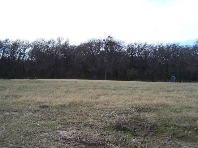 255 Bent Oak Drive, Pottsboro, TX 75076 (MLS #14434065) :: Premier Properties Group of Keller Williams Realty