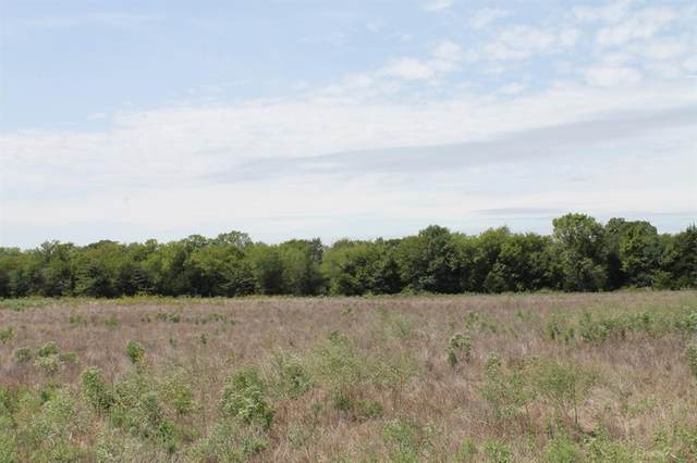 Tract 3 Cr 2260, Quinlan, TX 75474 (MLS #14434218) :: Team Hodnett