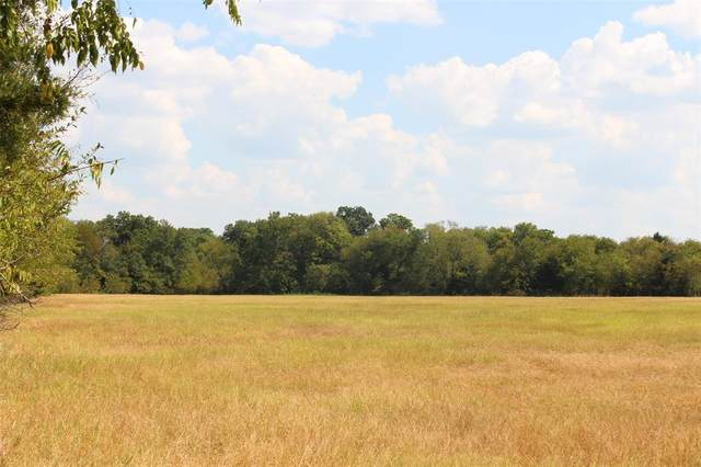 402 Rs County Road 1520, Lone Oak, TX 75453 (MLS #14434458) :: Team Hodnett