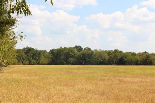 402 Rs County Road 1520, Lone Oak, TX 75453 (MLS #14434458) :: Frankie Arthur Real Estate