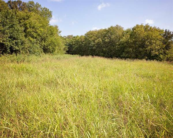 TBD Fm 36, Caddo Mills, TX 75135 (MLS #14434607) :: All Cities USA Realty