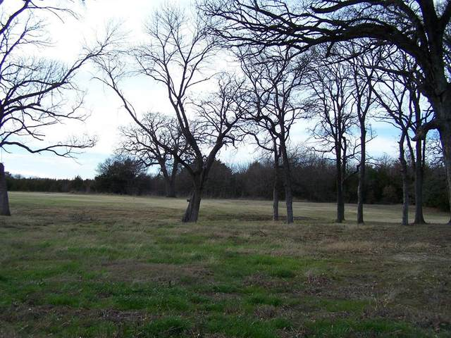 181 Bent Oak Drive, Pottsboro, TX 75076 (MLS #14434806) :: Trinity Premier Properties