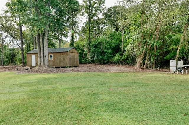 10229 County Road 290, Tyler, TX 75707 (MLS #14435232) :: The Kimberly Davis Group