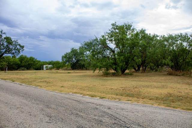 222 County Road 221 Road, Breckenridge, TX 76424 (MLS #14437354) :: Trinity Premier Properties