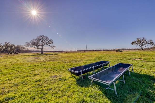 TBD 2 County Road 256, Stephenville, TX 76401 (MLS #14437783) :: The Mauelshagen Group