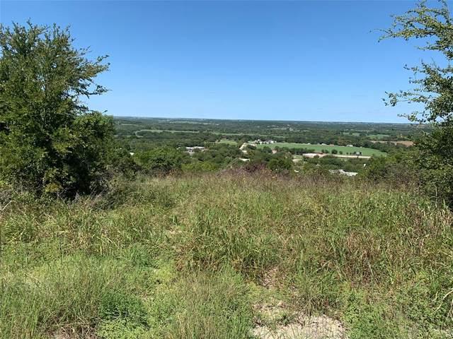 424 Bluff View Court, Bluff Dale, TX 76433 (MLS #14438143) :: Feller Realty