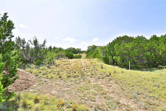 TBD Fm 89, Tuscola, TX 79562 (MLS #14438249) :: Potts Realty Group