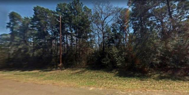 Lot 75 Maple Court, Magnolia, TX 77355 (MLS #14438664) :: The Tierny Jordan Network