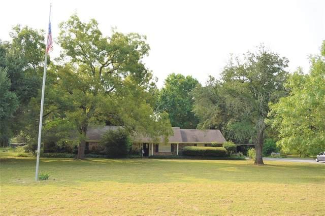 4836 Fm 16, Ben Wheeler, TX 75754 (MLS #14438817) :: The Hornburg Real Estate Group