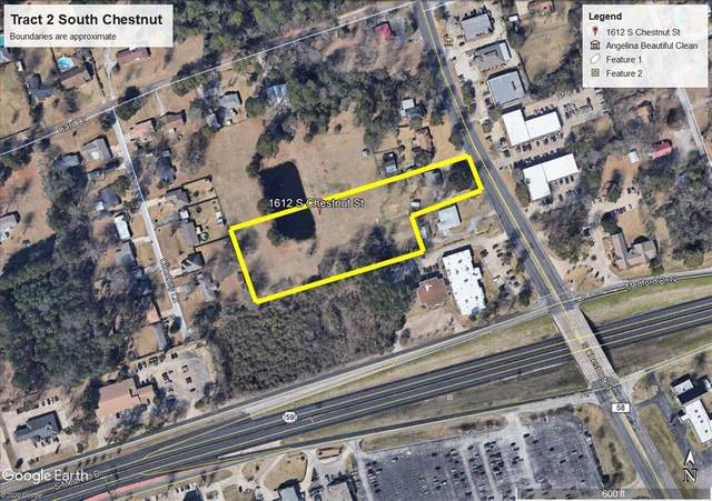 Tract 2 South Chestnut, Lufkin, TX 75901 (MLS #14438969) :: All Cities USA Realty