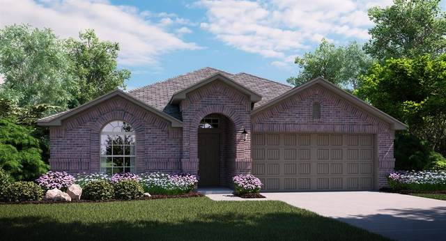 4709 Bluestone Road, Little Elm, TX 76068 (MLS #14439133) :: All Cities USA Realty