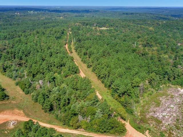 tbd County Road 169, Garrison, TX 75946 (MLS #14439709) :: Real Estate By Design
