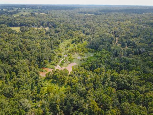 4770 County Road 3800, Athens, TX 75752 (MLS #14439878) :: Real Estate By Design