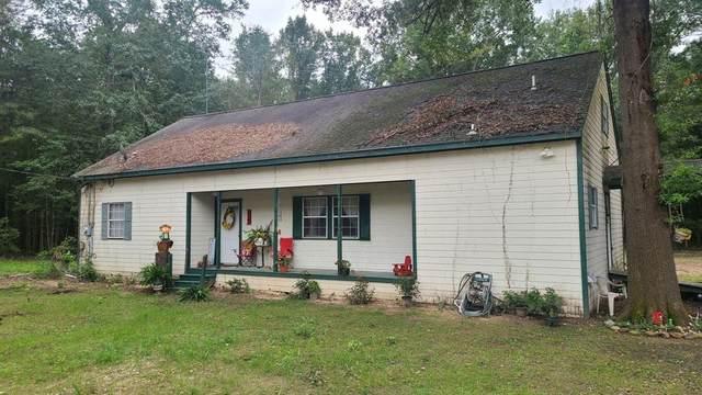 16150 County Road 3300 Dogw, Brownsboro, TX 75756 (MLS #14440132) :: The Kimberly Davis Group