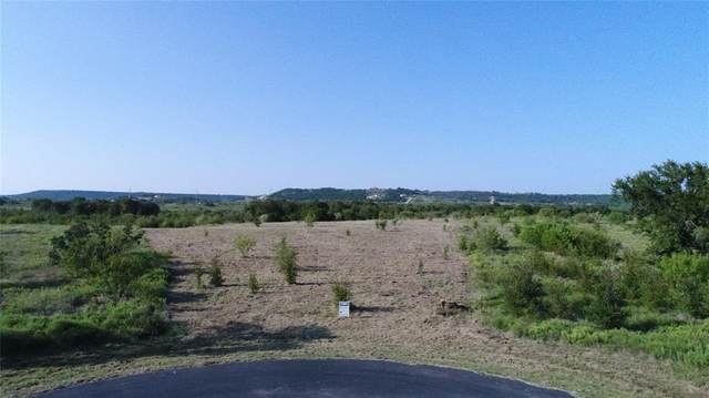 Lot 21 Northern Bobwhite Court, Graford, TX 76449 (MLS #14440161) :: Potts Realty Group