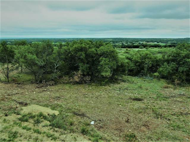 TBD Long View Drive, Brownwood, TX 76801 (MLS #14440548) :: The Kimberly Davis Group