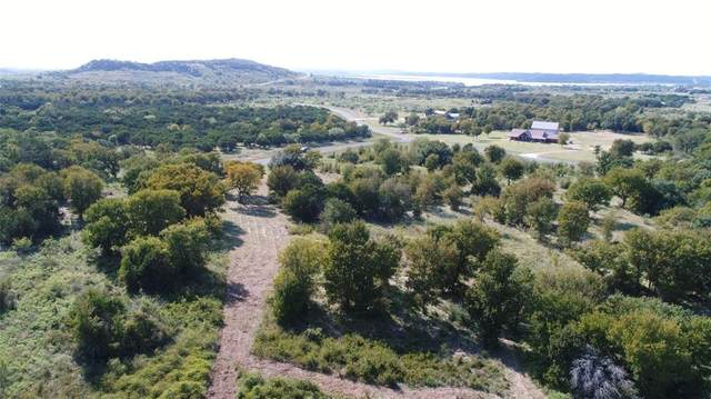 1079 Mountain Bluebird Court, Possum Kingdom Lake, TX 76449 (MLS #14441954) :: Potts Realty Group