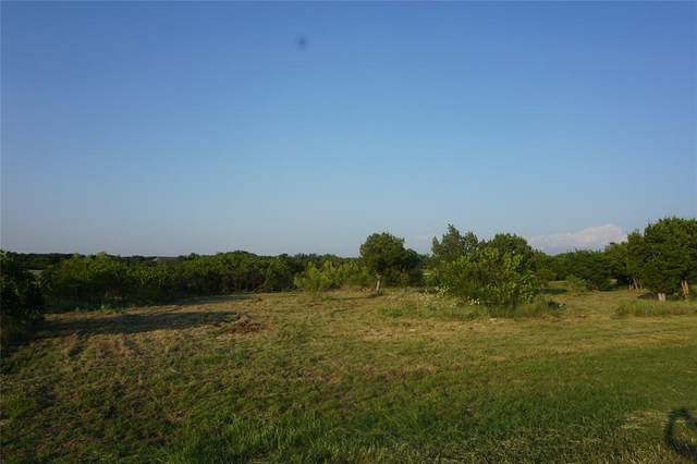 Lt 282 Shooting Star Court, Possum Kingdom Lake, TX 76449 (MLS #14441994) :: The Chad Smith Team