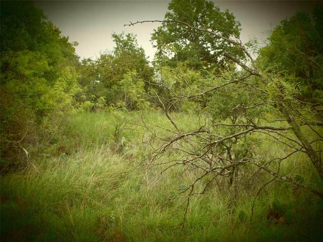 LOT 96 Featherbay Blvd, Lake Brownwood, TX 76801 (MLS #14442088) :: The Kimberly Davis Group