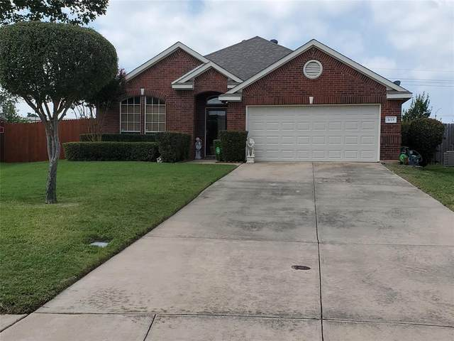 317 Wallford Lane, Lake Dallas, TX 75065 (MLS #14442216) :: Bray Real Estate Group