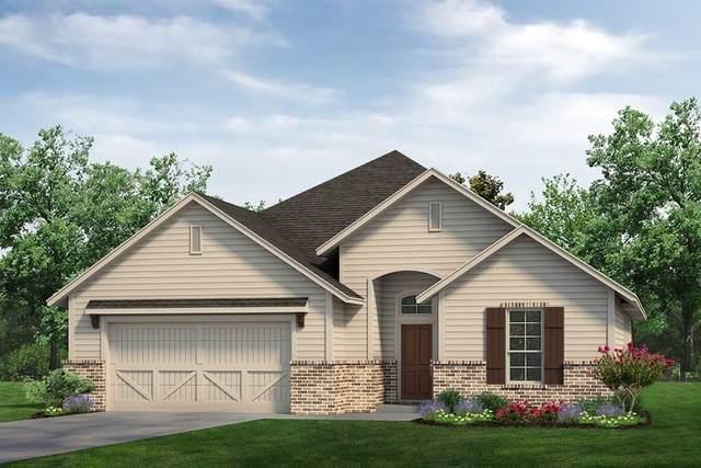 904 Blackbird Drive, Sherman, TX 75092 (MLS #14442504) :: Keller Williams Realty