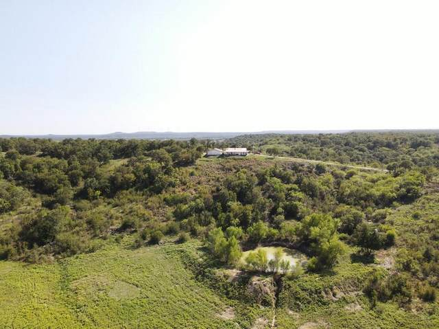 1191 State Highway 114, Jacksboro, TX 76458 (MLS #14442896) :: The Hornburg Real Estate Group