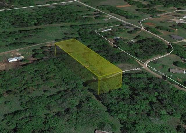 134 County Road 3519, Cuney, TX 75759 (MLS #14443635) :: The Kimberly Davis Group