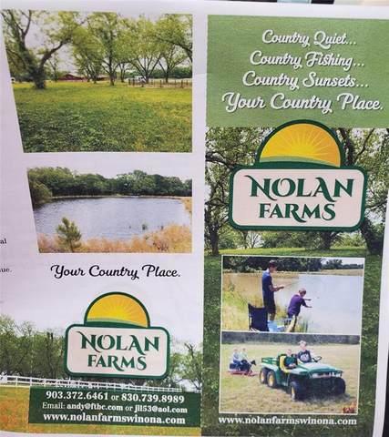 Lot 50 Hay Meadow South, Winona, TX 75792 (MLS #14444992) :: Maegan Brest | Keller Williams Realty